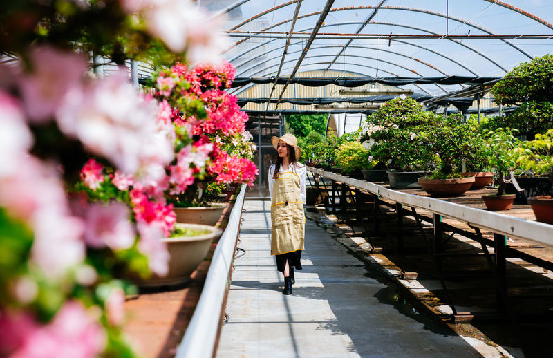 Full length of woman standing by flowering plants