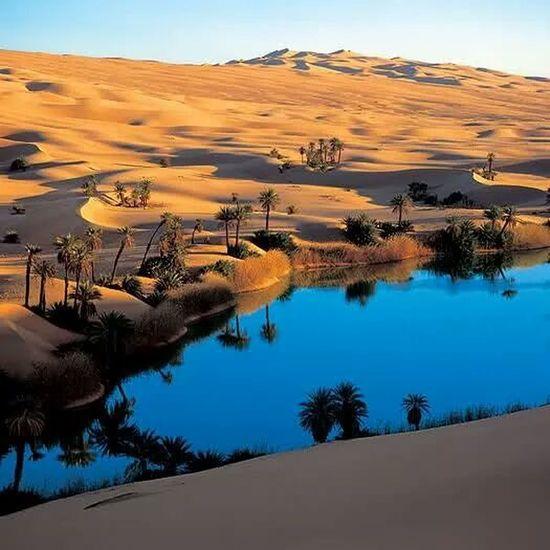 Sahara , Algéria ♡