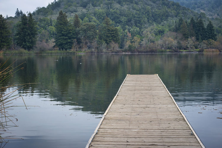 Wood dock on a lake Calm Horizontal Composition Pond Beauty In Nature Boards Floating On Water Hillside Lake Nature No People Outdoors Pier Reflection Reflections In The Water Scenics Serene Tranquil Outdoors Tranquil Scene Tree Walkway Water Wooden Texture