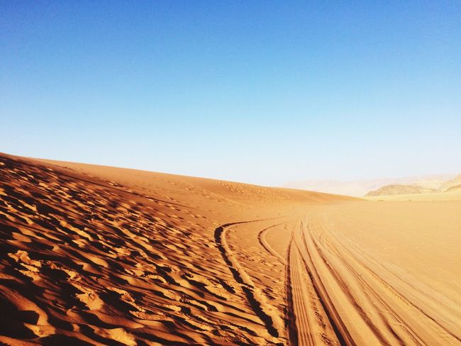 EyeEm Selects Desert Arid Climate Landscape Clear Sky Copy Space Sand Dune Sand Nature Tranquil Scene Scenics Day Tranquility Blue Outdoors Beauty In Nature Tire Track No People Sky Mammal