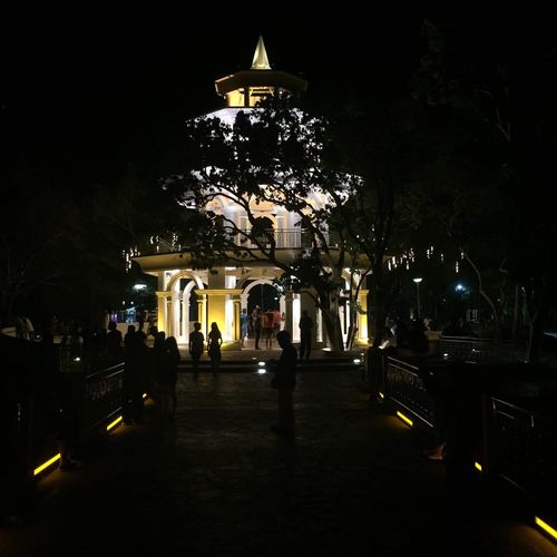 Darkness vs Light Illuminated Night City Tree Architecture Real People Celebration Outdoors Large Group Of People Christmas Christmas Decoration Sky People