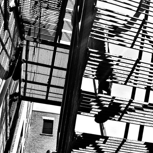 Going up... Stairs Fireescape Blackandwhite Blackandwhitephotography Bnw Lines Lightandshadow Footsteps Brickwall Yersokewl