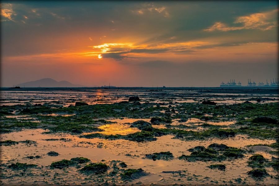 Water Sea Low Tide Sunset Beach Multi Colored Red Sand Horizon Orange Color