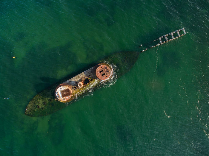 Melbourne, Australia - Dec 20 2016: Looking straight down from the air at historic shipwreck of HMVS Cerberus in shallow turquoise waters. Closeup shot. Melbourne, Victoria, Australia Animal Themes Animal Wildlife Animals In The Wild Day Green Color High Angle View Nature No People Outdoors Reptile Sea Sea Life Swimming UnderSea Water Waterfront