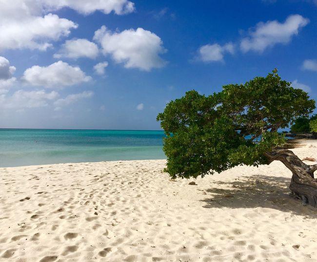 Beach Sand Sky Cloud - Sky Sea Nature Beauty In Nature
