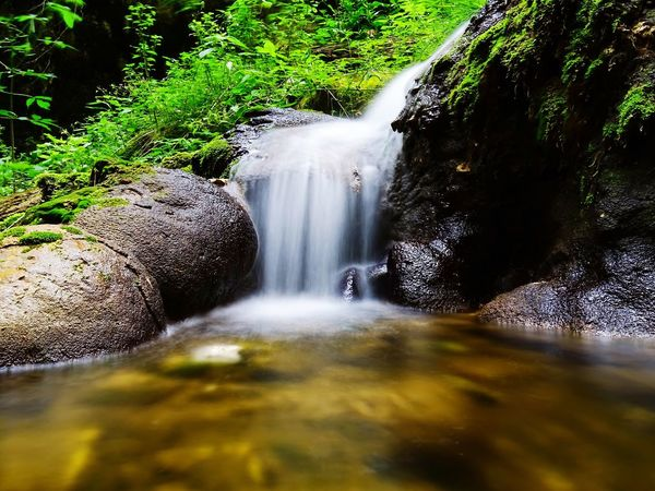 Connecting with nature Motion Flowing Water Water Waterfall Long Exposure Beauty In Nature Nature Blurred Motion Scenics Forest Tranquility Trees And Nature Moss Stones & Water Gold Gold Water Pure Pure Beauty Nature Photography Joy Freshness Life Delicate Beauty Wood Wild Plants The Week On EyeEm