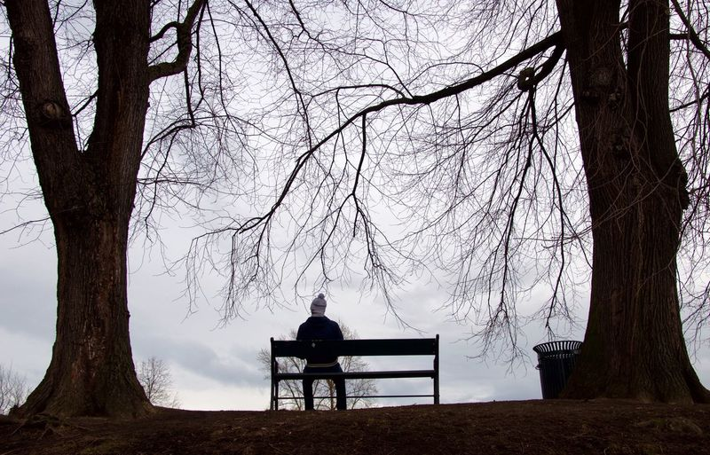 Rear View Of Man Sitting On Bench By Bare Trees Against Sky