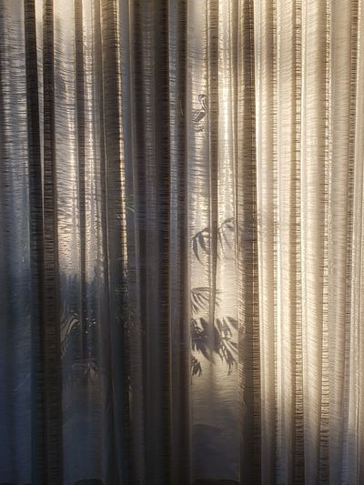 Full frame shot of curtain with window