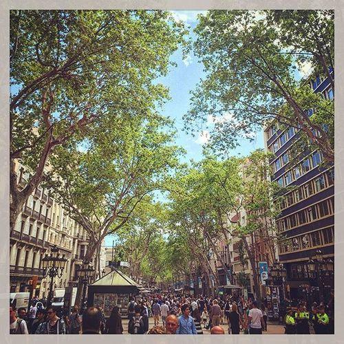 Las Ramblas Bcl Barcelona