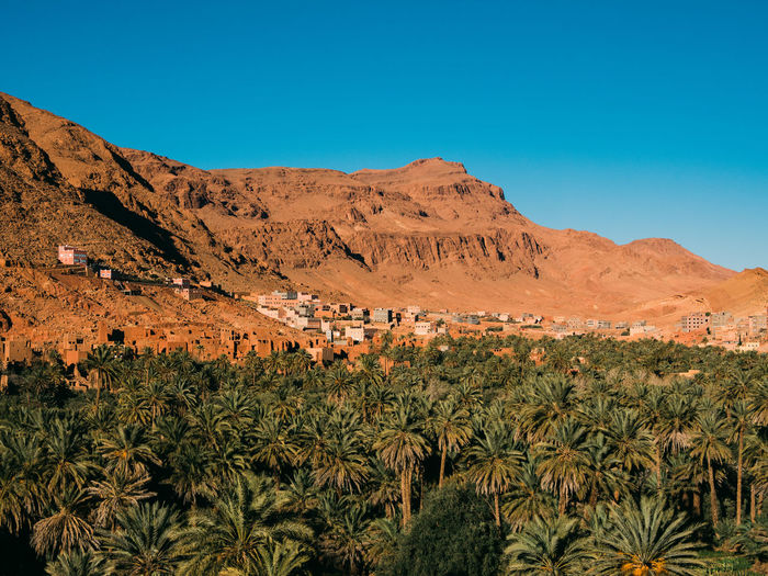 An arabic village in the mountains with a sea of palm trees in front