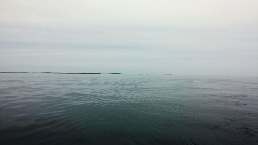 Sea Tranquility Outdoors No People Horizon Over Water Nature Water Beauty In Nature Day Beach Swimming Scenics Sky UnderSea Open Ocean Boothbay Harbor Maine