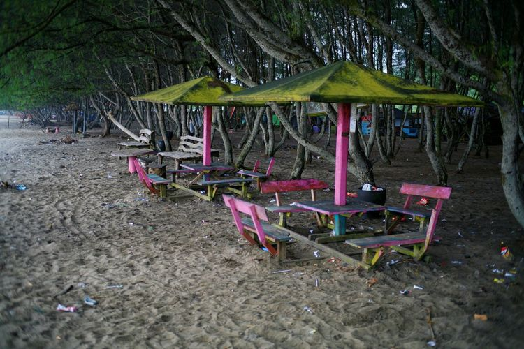 Empty chairs at beach in forest