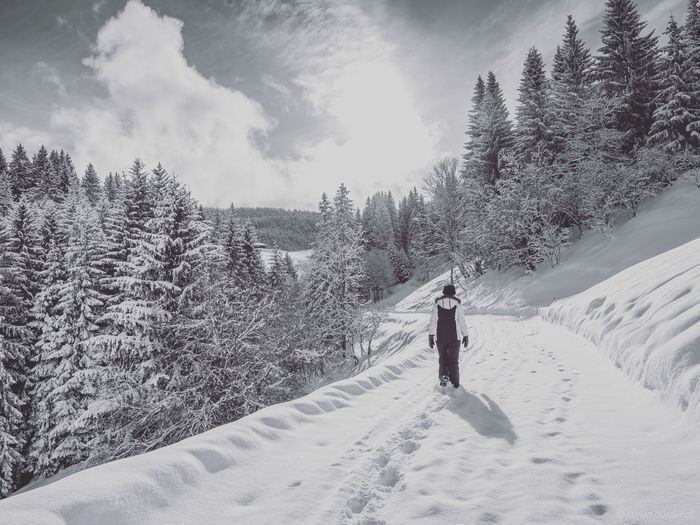 Woman Walking On Snow Covered Field Against Trees
