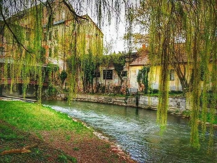 Mill Oldmill Oldbuilding Oldbuildings Trees Hungary Water Building Buildings BuildingPorn Nature Nature Photography Nature_perfection Naturelovers HDR Hdr_pics Like4like Picoftheday Photoshoot Photography Taking Photos Check This Out Hello World Hanging Out Ruins