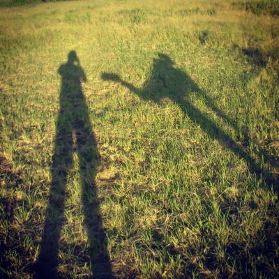 Summer :-* <3 Auto_focus AmateurPhotograph Art Another morning MorningSunshine myWay Sunshine Shadow Summer Sunrise green GreenField Passion Photograph nature loveislove landscape_captures LandScape