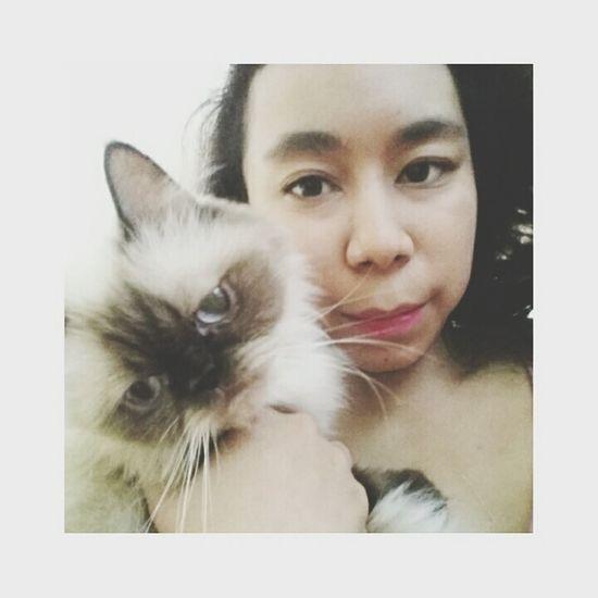 her name's Chochitha aka Chita 💋💋 Cat Catsofinstagram Catoftheday Cat Lovers Catlovers Cats Of EyeEm