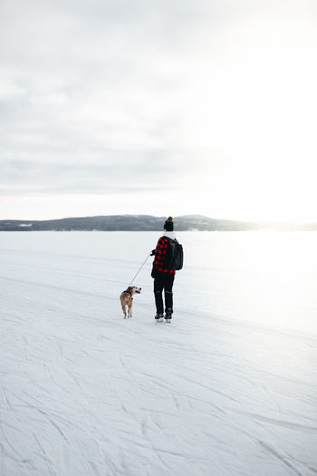 Full length of a dog on snow covered landscape