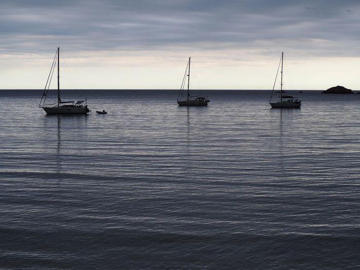 Sailboats sailing on sea against sky