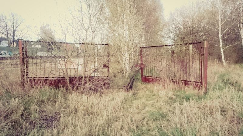 Rusty Metal Rusty Metal Fence Fence Gate Rails Railway Railway Track Brown Outdoors Day Overgrown - Outskirts of Berlin
