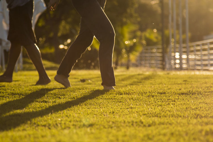 Low Section Of People Walking On Grassy Field At Park