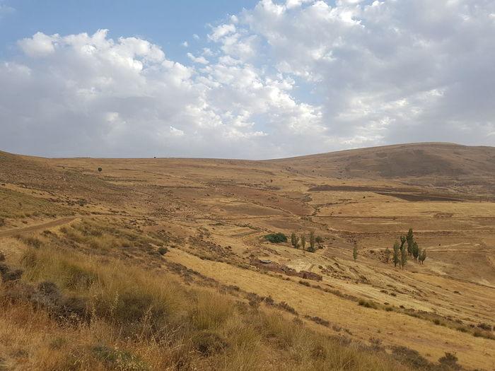 Sand Dune Rural