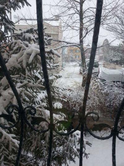 Hello World Hi! Taking Photos OpenEdit Photo Frozen Snow