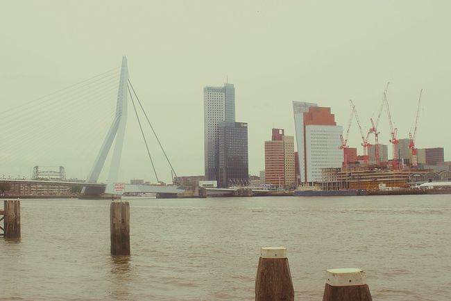 Netherlands, Rotterdam (2011) Netherlands South Holland Rotterdam Bridge - Man Made Structure Travel Destinations City Water Architecture Suspension Bridge Travel Built Structure Outdoors Business Finance And Industry Day No People Building Exterior EyeEm Best Shots River Delta Port Tourism Connection Rotterdam Architecture