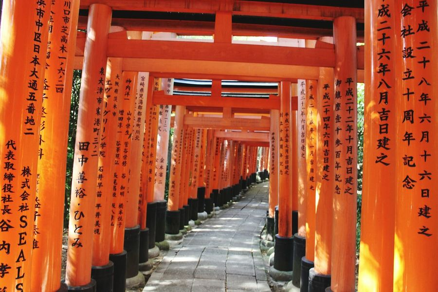 TORII Inari Shrine Japan Japanese Culture Spirituality Travel Destinations Indoors  Orange Color Place Of Worship Tourism Architectural Column No People Built Structure Architecture Religion Shrine Day Travel The Way Forward