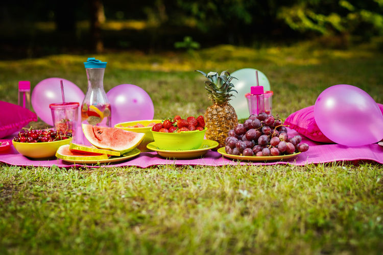 Picnic Food Forest Food And Drink Grass Plant Fruit Day Healthy Eating Nature Freshness Plate No People Front Or Back Yard Table Field Glass Container Drink Wellbeing Selective Focus Outdoors