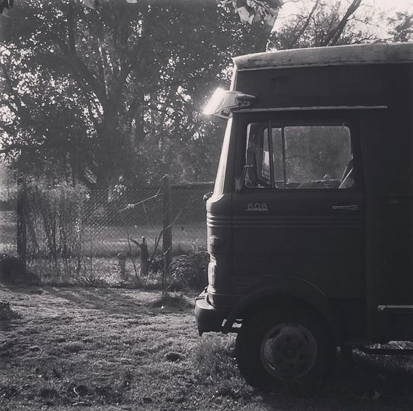 EyeEmNewHere 608 Schwarzweiß Blackandwhite Ride In Style Buslife 1971 My Big Love Living Off The Grid Oldtimer Mercedes-Benz Tree Outdoors Day Transportation No People Nature Grass A New Beginning Capture Tomorrow