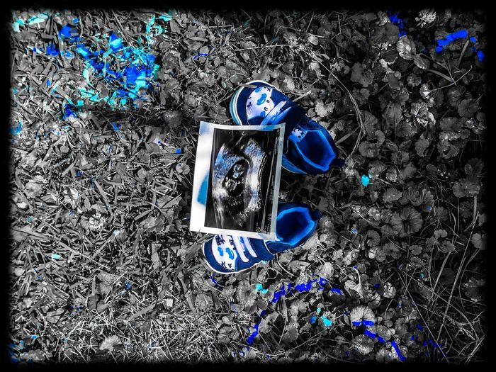 Gender Reveal Gender Reveal Its A Boy ♥ Blue High Angle View Close-up