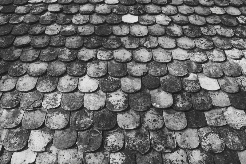 Clay roof tiles covered with old moss. Black and white Architecture Black & White Construction Textures and Surfaces Abundance Arrangement Backgrounds Clay Roof Tiles Day Decoration Fish Skin Full Frame House In A Row Large Group Of Objects Light Scattering Mossy Stone No People Old Look Photography Old Vintage Outdoors Pattern Roof Tile Rotten Roof