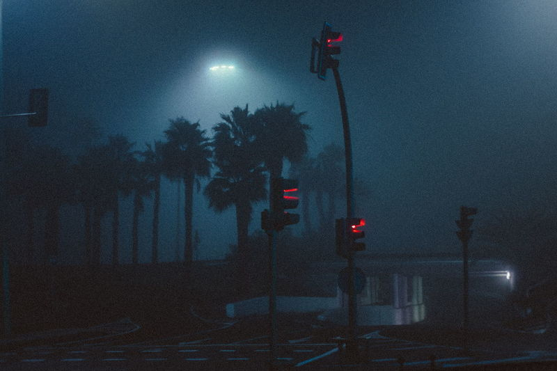 Illuminated street road signals against palm trees in city at night