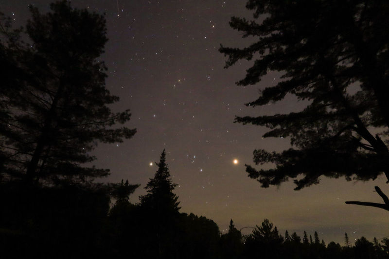 Algonquin Park Algonquinpark Algonquinprovincialpark Astronomy Beauty In Nature Growth Low Angle View Moon Nature Night No People Outdoors Scenics Silhouette Sky Star - Space Tranquil Scene Tranquility Tree