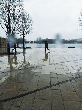 Hamburg Rain Lonely Walking