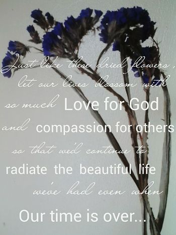 I hope some of you will agree. :) God Is Great God Is Love Love And Compassion Feeling Thankful A Beautiful Life Dried Flowers Purple ♥ Reflection EyeEm Flower My Quote