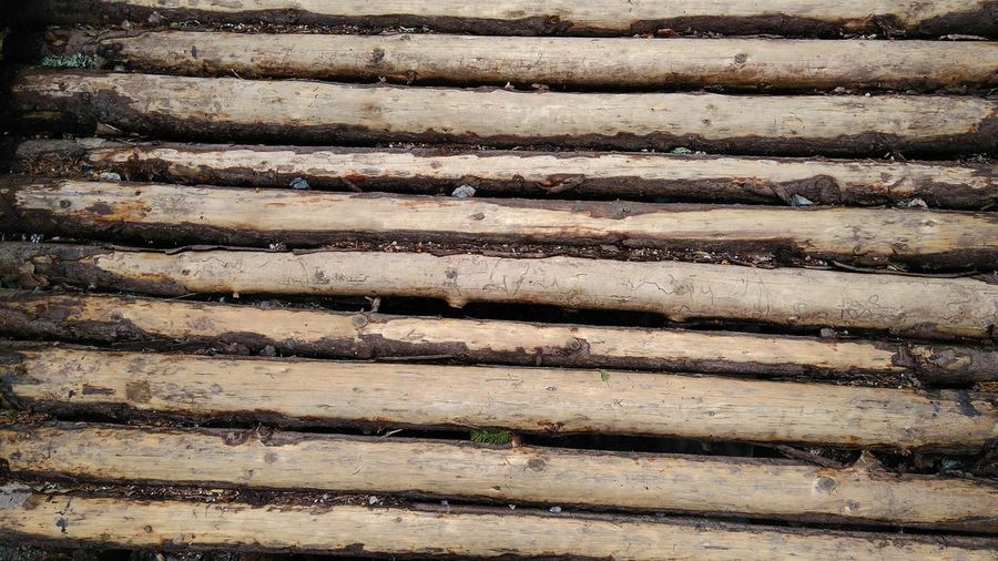 Backgrounds Brick Wall Bridge Bridge - Man Made Structure Bridge Floor Bridges Bułgaria Close-up Day Detail Floor Full Frame No People Outdoors Patern Pieces Pattern Repetition Texture Textured  Vitosha Mountain Wood Wood - Material Wooden Texture Wooden Texture Background Wooden Textures