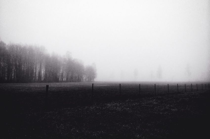 One Photo A Day 2014 Landscape_Collection MADE IN SWEDEN Fog Day 3.