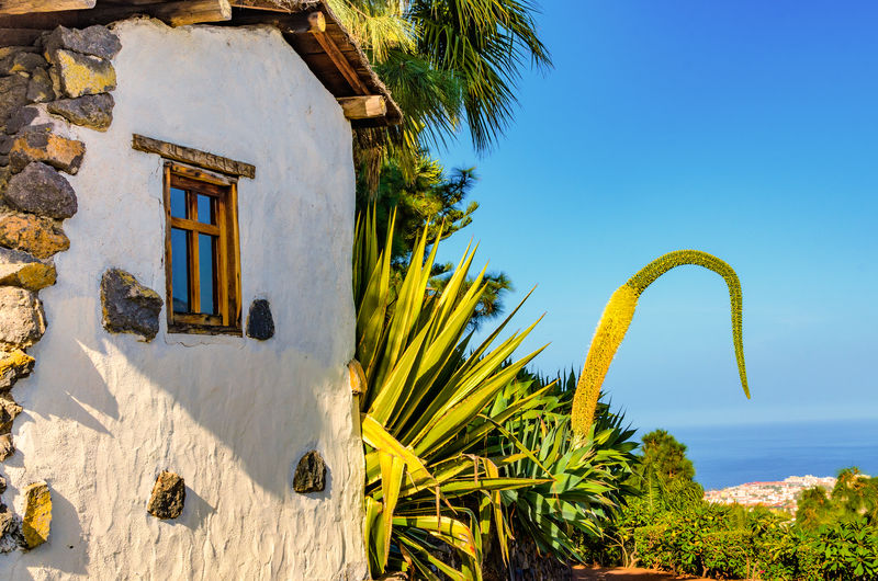 A typical Canarian house in Montañeta. On a hike to the mountain El Monasterio de San Pedro in the village Montañeta I saw this typical Canarian house. From there you have a fantastic view. Canary Islands EyeEm Nature Lover EyeEm Selects EyeEm Gallery EyeEmBestPics Feliz-Photo La Montañeta Nature Photography SPAIN Tajinaste Typical Building Building Exterior Built Structure El Monasterio Eye4photography  Growth House Nature Palm Tree Plant Tenerife Teneriffa Tree Tropical Climate