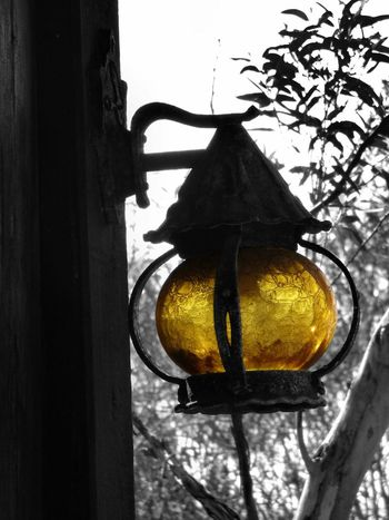We all need a light during our darkest times! To everyone, here is a light for you 😃 No People Hanging Day Outdoors Close-up Tree Different Perspective Mental Health Awareness Focus On Foreground Together Black And White With A Splash Of Colour Monochrome Photography Outdoors Photograpghy  Photography Art Is Everywhere Different Points Of View Lantern From My Eyes To Yours Yellow Light And Shadow Light Outdoor Photography EyeEmNewHere The Great Outdoors - 2017 EyeEm Awards BYOPaper! Paint The Town Yellow The Week On EyeEm