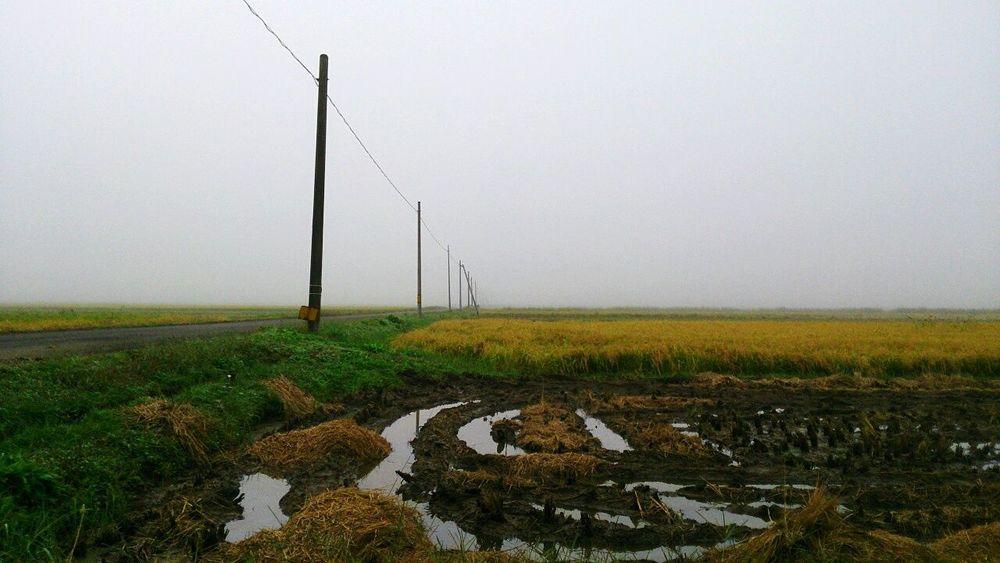 Eyem Best Shots Landscape Landscape_photography Fog Naturephotography