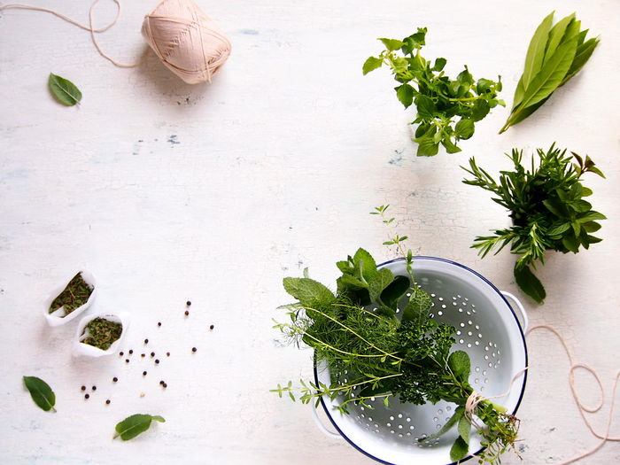 Close-up Directly Above Freshness Green Color Healthy Eating Herb High Angle View Leaf Leaves Nature Plant Part Still Life Table