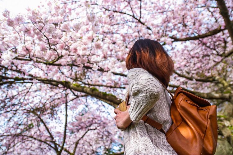 Woman with pink cherry blossoms in spring