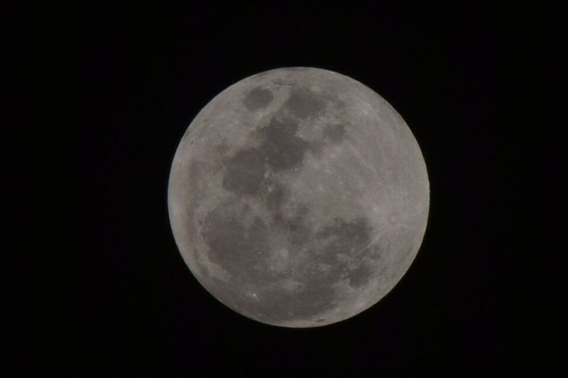 The Full Moon is beautiful like a sweet girl, Taken on 23/02/2016 in India. Full Moon Moon Moon Porn Learn & Shoot: After Dark Pastel Power Night Photography EyeEm EyeEm Gallery Getty Images EyeEm Best Shots Eyeem Best Image Eyeem Best Click Check This Out Eyeem4photography Eye4photography  From My Point Of View EyeEm Nature Lover Eyeem X Whitewall: Nature Eliment Of Nature Wonder Of Nature