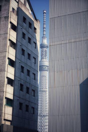 도시, 도쿄, 빌딩, 스카이트리 . . #하루한컷 #도쿄 #스카이트리 #도시 #빌딩 #5DMARK4 #새아빠백통 #EF70200F28LIIISUSM City Modern Skyscraper Architecture Building Exterior Built Structure Sky
