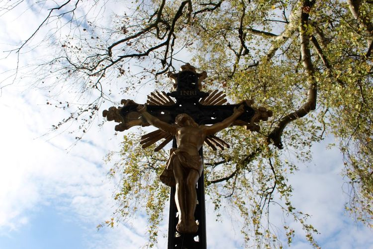 The cross by the side of the road Cross Jesus Jesus Christ Low Angle View Religion Religious  Sky Spiritual Tree