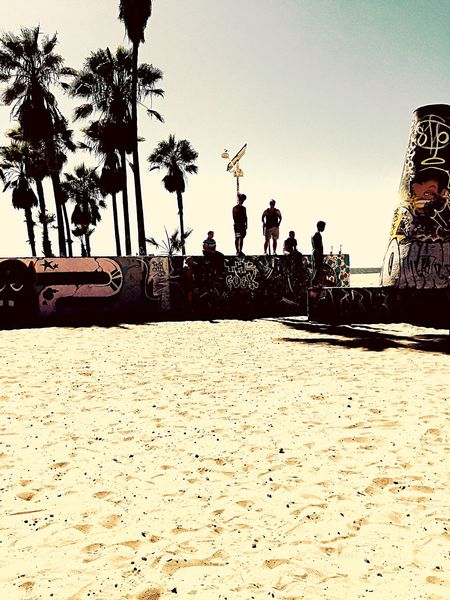Palm Tree Men Coconut Palm Tree Losangeles Venice Beach Graffiti Graffiti Art Cali California Dreaming California Love City Of Angels Piasek Palmy Palmen Kunst Boys