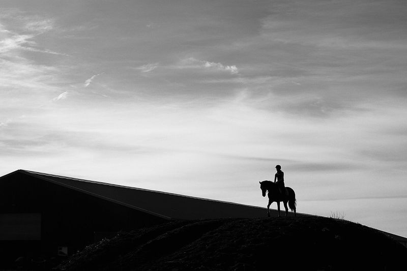 Silhouette person riding horse on field against sky