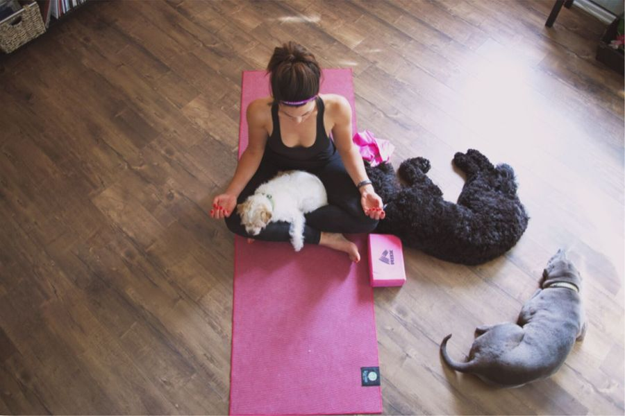 Meditation at home Meditation Yoga Dogs Peace Quiet Moments Dog Love Dogs Of EyeEm Workout Fitness Home Workout