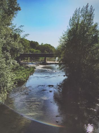 Ter river 🌊🌊🌿🍃 Relaxing Taking Photos Enjoying Life Wildlife Photooftheday Girona Picoftheday Check This Out Clouds And Sky Enlight